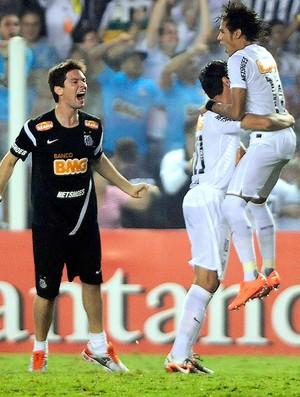 Neymar, Santos x Velez (Foto: Marcos Ribolli / Globoesporte.com)