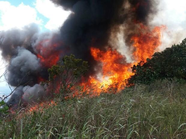 Vegetação está pegando fogo desde o último domingo (Foto: André Luis Pennycook/Acervo pessoal)