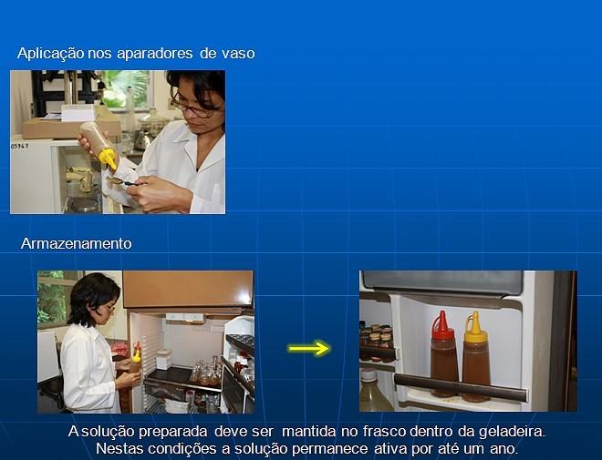 Veja o passo a passo do extrato do cravo-da-índia (Foto: Acervo do Laboratório de Malária e Dengue/Inpa)