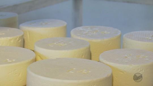 Produtores querem reconhecimento de queijo Canastra no Sul de MG