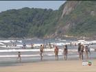Movimento nas estradas que ligam Curitiba às praias do PR e de SC é alto
