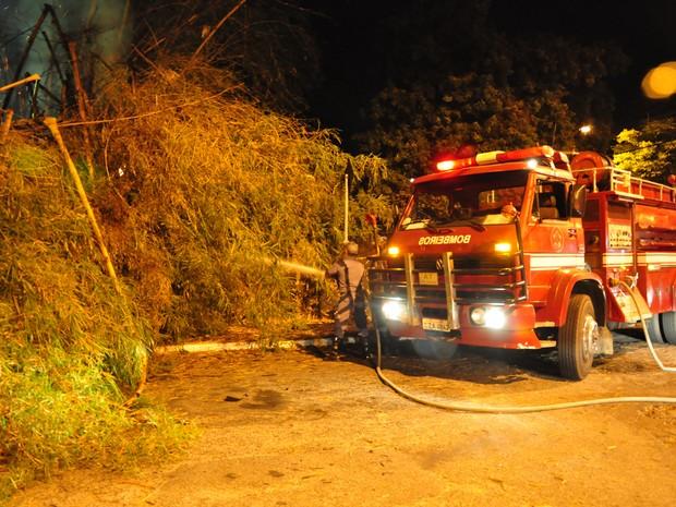 incêndio sítio do Pica Pau amarelo (Foto: Reprodução/TV Vanguarda)