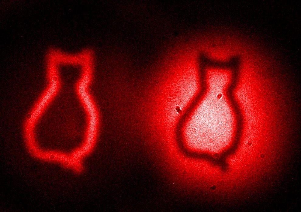"""""""Imagem fantasma"""" produzida a partir de emaranhamento quântico (Foto: Gabriela Barreto Lemos/Divulgação)"""