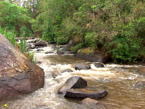 Em Extrema (MG) projeto Conservador das Águas protege nascentes de riachos da região (Foto: Reprodução de TV)