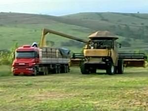 Agricultores finalizam colheita da soja em Ibiá (Foto: Reprodução/TV Integração)