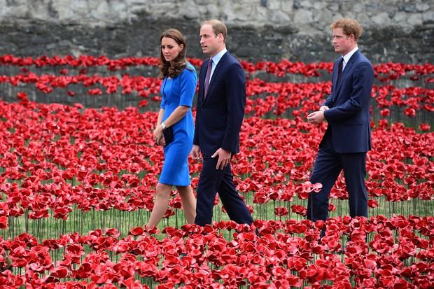 Principe William e Kate Middleton (Foto: AFP / Agência)