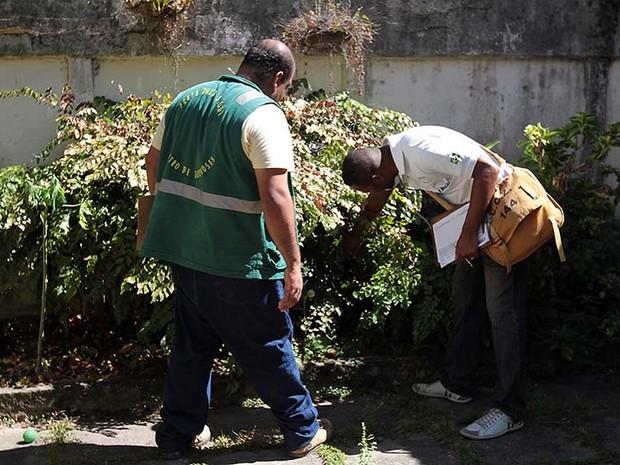 Mutirões fazem combate à dengue em bairros de Macaé (Foto: Guga Malheiros / Divulgação)