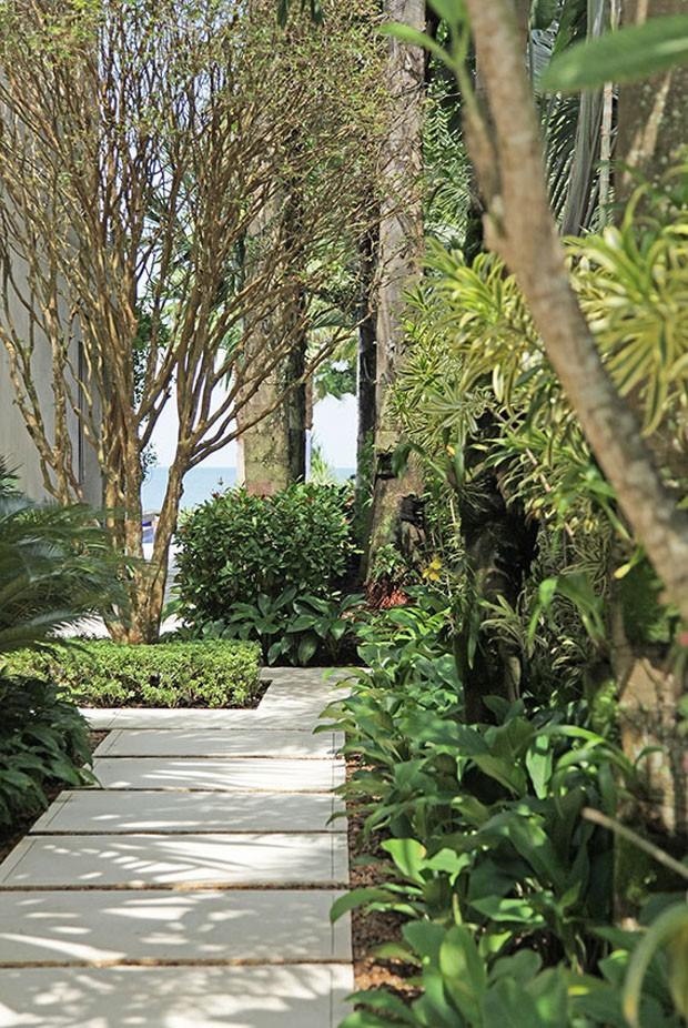 Jardim tropical a beiramar projetado por Alex Hanazaki  Casa Vogue