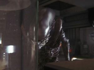 Game Alien (Foto: Divulgação / Sega)