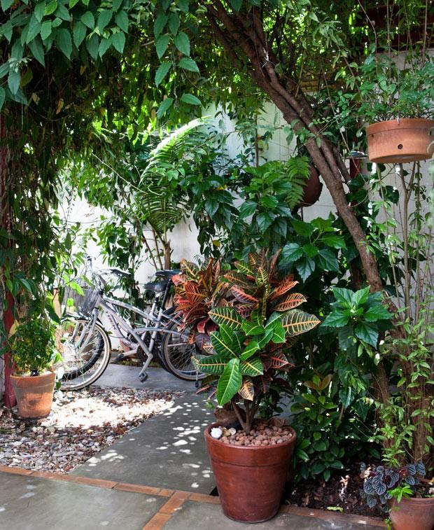 plantas-jardim-vasos (Foto: Lufe Gomes/Editora Globo)