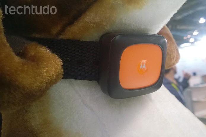 Coleiras da Motorola têm conexões 3G, Wi-Fi e Bluetooth (Foto: Elson de Souza/TechTudo)