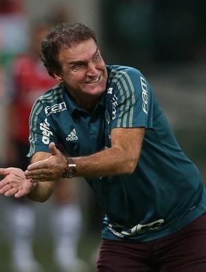 Cuca Palmeiras x Atlético-MG