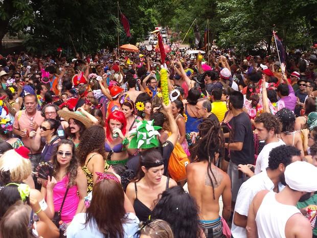 17.02 - Bloco Peixoto arrasta multidão no bairro Santa Efigênia, em BH. (Foto: Michele Marie / G1)