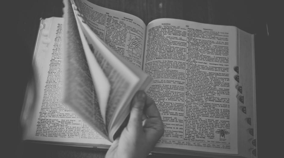 Dicionario, estudo, escola, estudar (Foto: Pexels)