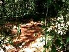 Fiscais registram desmatamento ilegal na Serra das Areias; veja vídeo