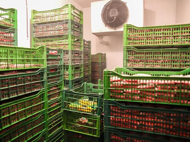 Produção de polpa de frutas da cooperativa do Povoado da Cruz foi afetada pela seca (Foto: Wallacy Medeiros)