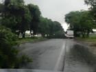 Tempestade derruba árvores e gera transtorno na BR-104, em Rio Largo