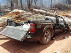 Árvore cai sobre carro e mata cinco pessoas da mesma família em RR