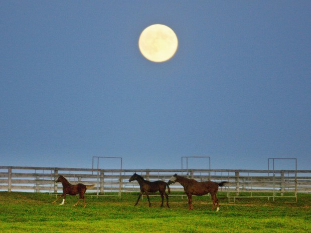 Lua observada em fazenda de Halton Hills, no Canadá (Foto: Hyungwon Kang/Reuters)