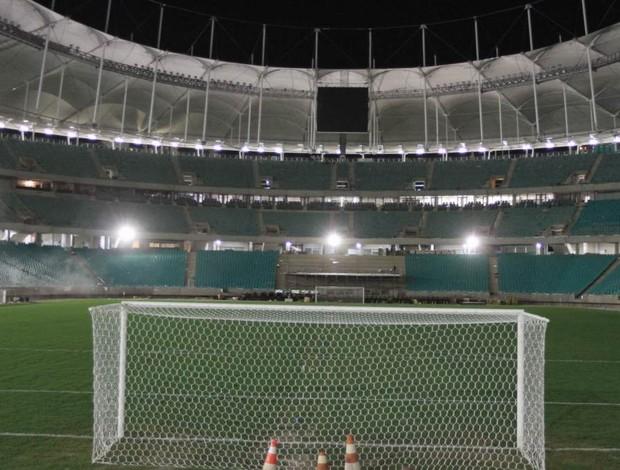 campo da Arena Fonte Nova em 27/02/2013 (Foto: Vagner Casaes / BAPRESS / Arena Fonte Nova / Divulgação)