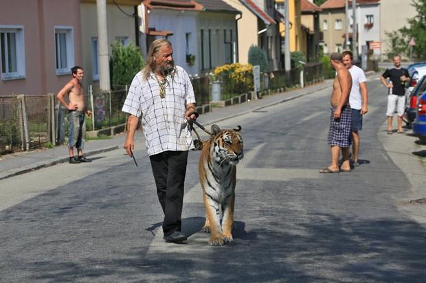 Joo levava o tigre na coleira como se fosse um gatinho inofensivo (Foto: Radek Mica/AFP)