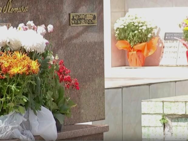 Embalagens plásticas e pratinhos devem ser retirados dos vasos (Foto: Reprodução/TV TEM)