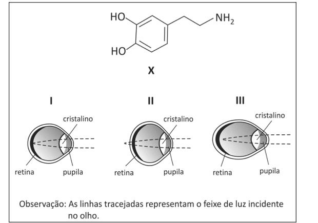 Esquema com fórmula estrutural (Foto: Reprodução/Fuvest)