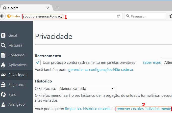 Acessando a tela de remoção de cookies do Firefox (Foto: Reprodução/Edivaldo Brito)