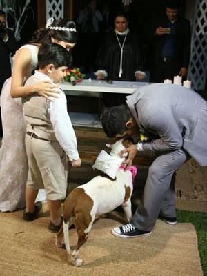 Pit bull entra como dama de honra em casamento levando alianças (Foto: Tibério Helio)