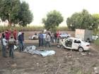 Funcionários dos Correios morrem em acidente na rodovia AL-220