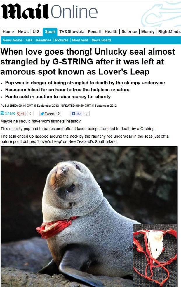 Foca foi encontrada com uma lingerie fio-dental enrolada no pescoço. (Foto: Reprodução/Daily Mail)