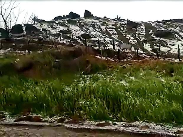 Granizo na região da SP-207, que liga São Sebastião da Grama a Rio Pardo (Foto: VC no G1)