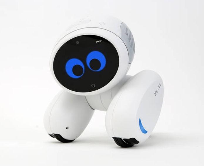 Robô é um assistente básico, brinca com crianças e cuida da segurança (Divulgação/Roobot)