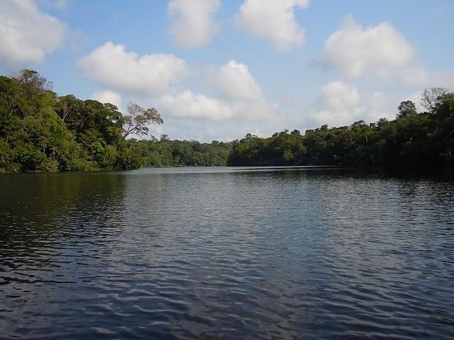 Amazônia (Foto: Ana Castro - produtora de reportagem (TV Globo))