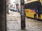 Excesso de lixo pode trazer prejuízo para população de Caruaru, em PE