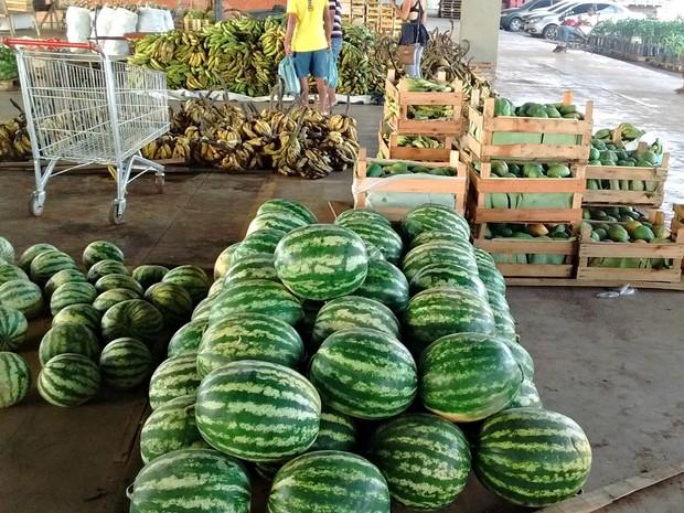 Produções de melancia, bananas e outras frutas são castigadas com a seca histórica  (Foto: Aline Nascimento/G1)