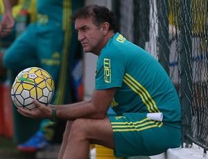 Cuca Palmeiras (Foto: Cesar Greco / Ag. Palmeiras / Divulgação)