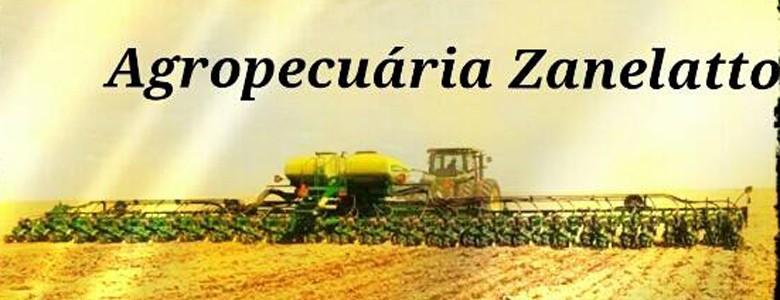 zanelatto_facebook (Foto: Reprodução/Facebook)