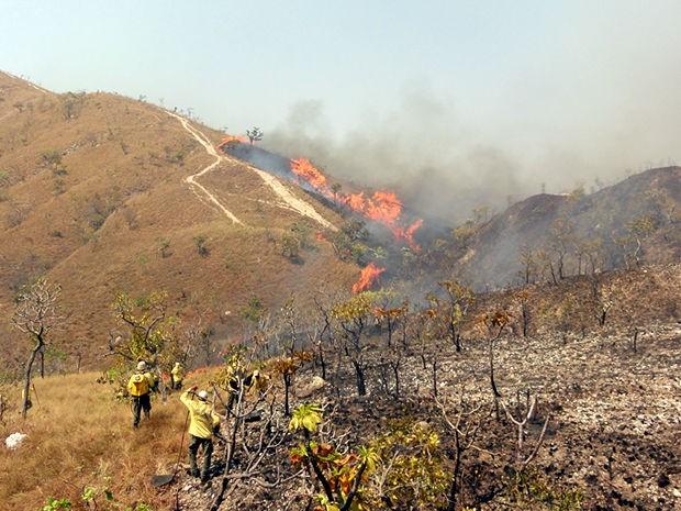 Incêndio fica em área próximo ao parque (Foto: Robson Luiz / Prefeitura de Chapada dos Guimarães)