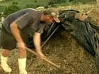 Agricultores de SC têm dificuldade para conseguir ajuda por causa da seca