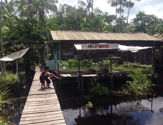 Com os recursos obtidos através do Fundo Açaí, um melioponário foi construído (Foto: Centro de Empreendedorismo da Amazônia/ Raphael Medeiros)