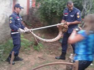 Cobras Rio Branco (Foto: Reprodução/TV Acre)