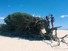 Isabella Santoni e Gabi Lopes curtem férias no Ceará e mostram fotos