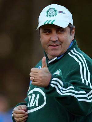 Gilson Kleina treino Palmeiras (Foto: Alex Silva/Agência Estado)