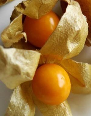 [Destaques] Superalimentos para o verão: saiba o que não pode ficar de fora da dieta