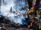 Período proibitivo de queimadas em MT deve ser prorrogado até outubro