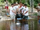 Várzeas são ideais para adaptação de peixe-boi no Amazonas, aponta Inpa
