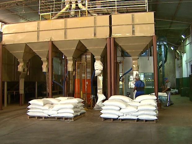 Fábrica de amendoim ficou 12 horas paradas na terça-feira (8) por falta de eletricidade (Foto: Maurício Glauco/EPTV)