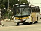 Vereadores querem fiscalização em ônibus após supostas irregularidades