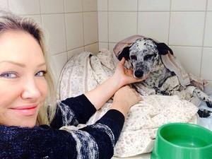 Deborah salvou Deva e a cachorrinha está para adoção (Foto: Arquivo Pessoal)